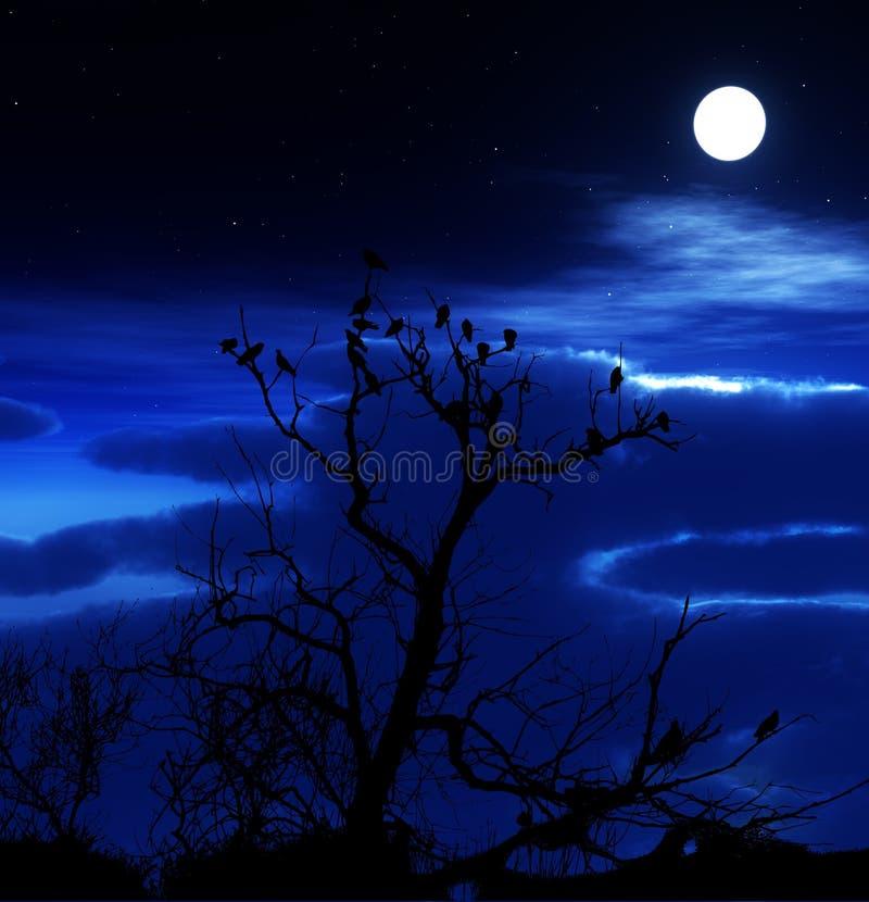 Pájaros en un árbol con el fondo del cielo imagen de archivo
