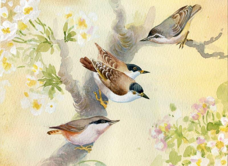 Pájaros en un manzano floreciente ilustración del vector