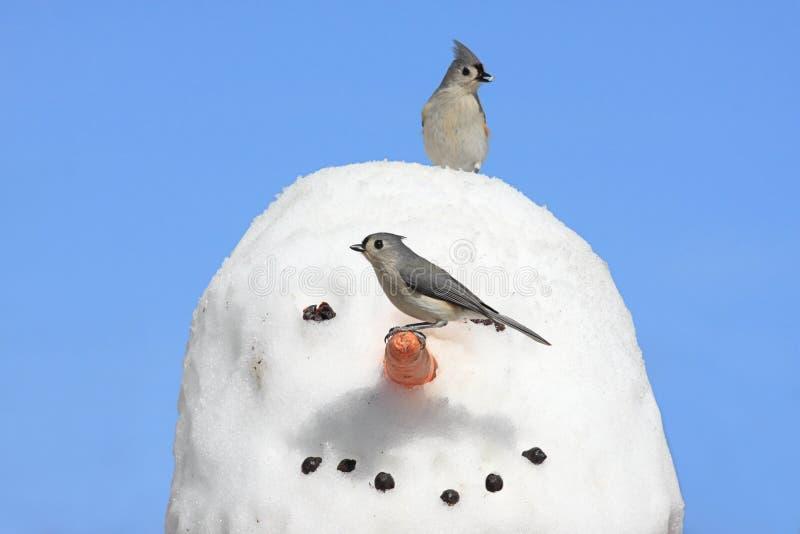 Pájaros en un muñeco de nieve imagenes de archivo