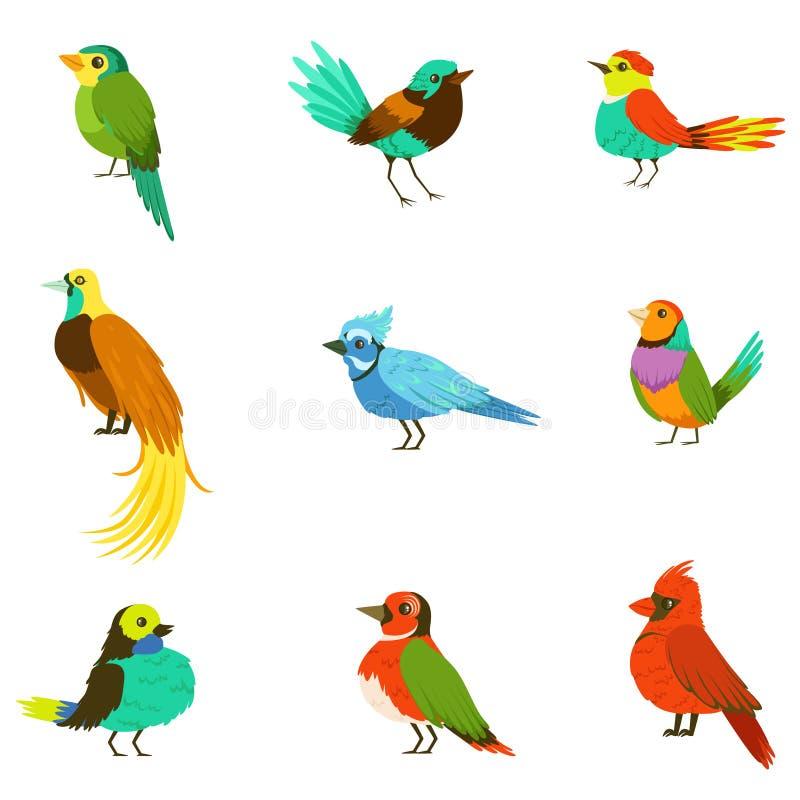 Pájaros exóticos de la lluvia Forest Collection Of Colorful Animals de la selva incluyendo la especie de pájaros y de loros del p ilustración del vector