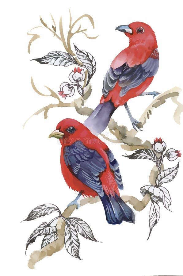Pájaros exóticos salvajes de la acuarela en las flores stock de ilustración