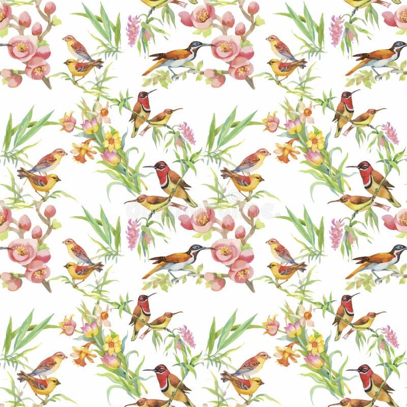 Pájaros exóticos salvajes de la acuarela en modelo inconsútil de las flores en el fondo blanco stock de ilustración