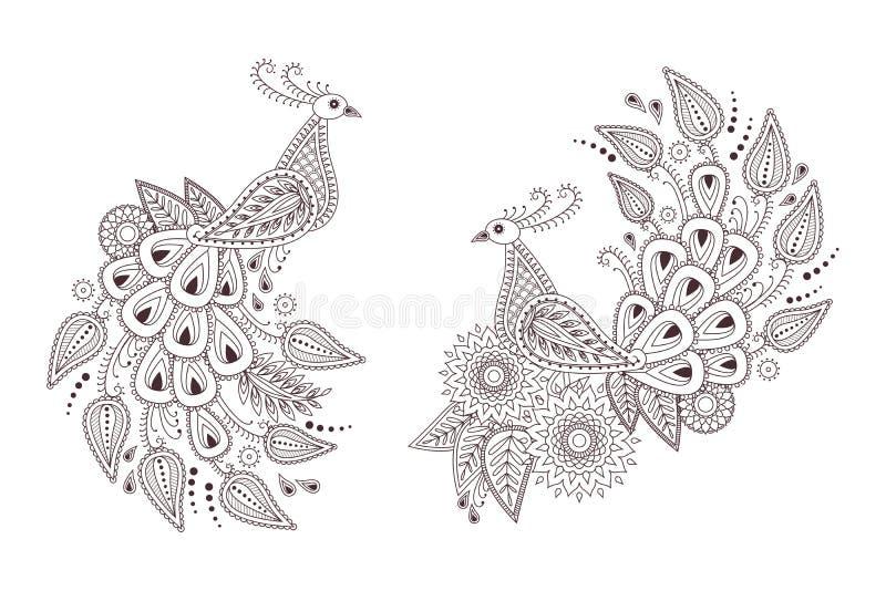 Pájaros hermosos del pavo real del vector en el estilo de Paisley del indio ilustración del vector
