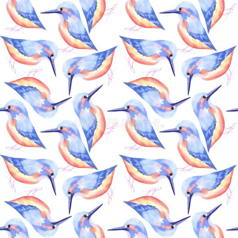 Pájaros inconsútiles de la acuarela del pájaro común del martín pescador o del Alcedinidae que pintan el fondo stock de ilustración