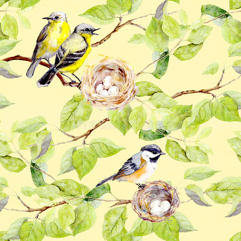 Pájaros, jerarquía en rama Modelo que relanza inconsútil watercolor stock de ilustración