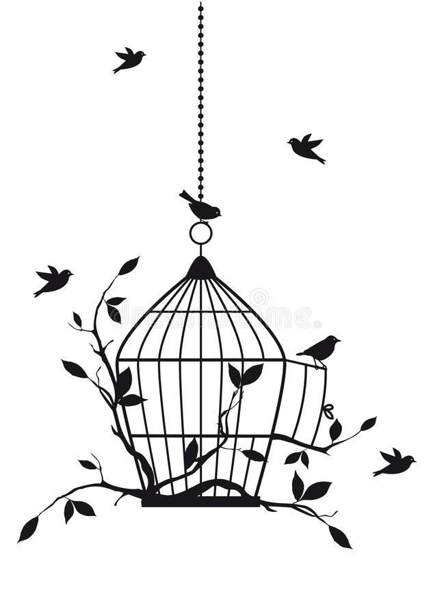 Pájaros libres, vector