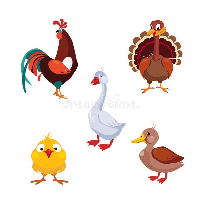 Increíble Aves Imágenes Enmarcadas Bosquejo - Ideas Personalizadas ...