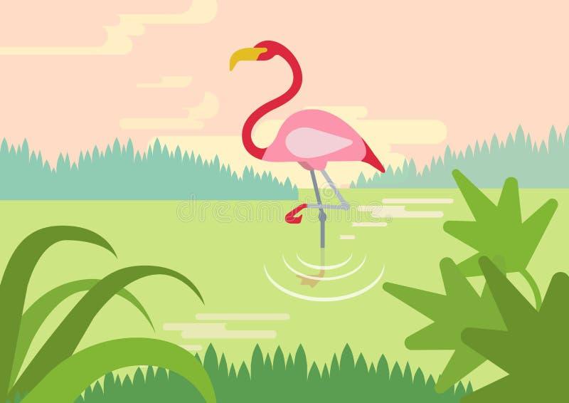 Pájaros planos de los animales salvajes del vector de la historieta del hábitat del pantano del flamenco libre illustration