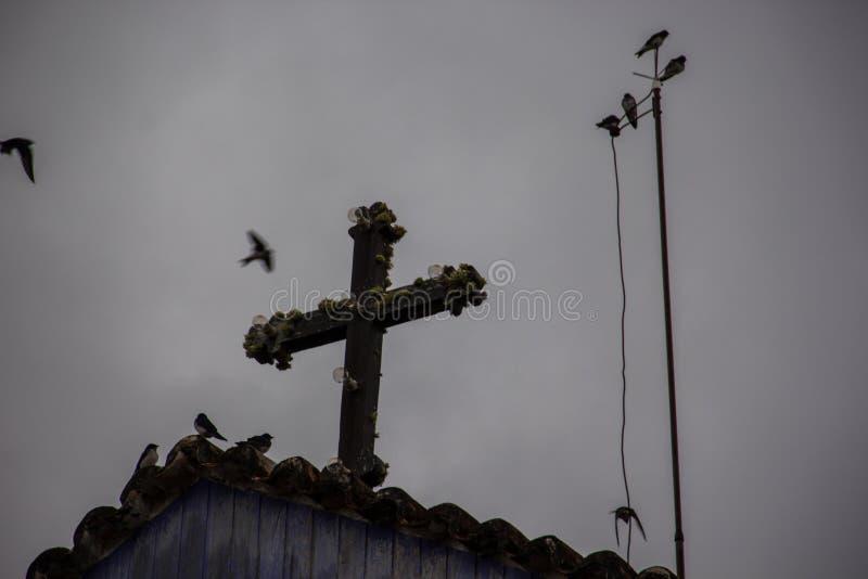 Pájaros que vuelan alrededor y que descansan sobre cruz histórica de la iglesia fotos de archivo