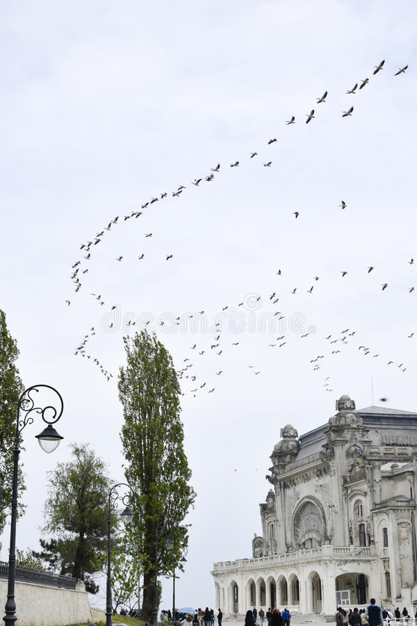 Pájaros que vuelan sobre el casino de Constanta fotografía de archivo libre de regalías