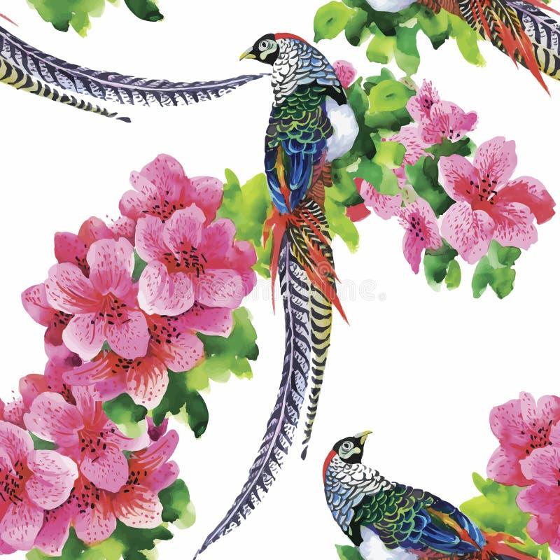 Pájaros salvajes de los animales del faisán en modelo inconsútil floral de la acuarela ilustración del vector