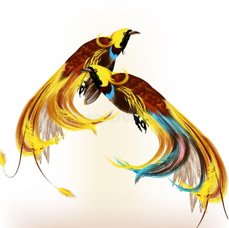 Pájaros tropicales coloridos stock de ilustración