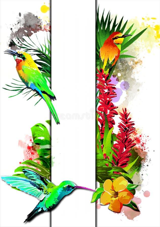 Pájaros tropicales con la bandera blanca libre illustration