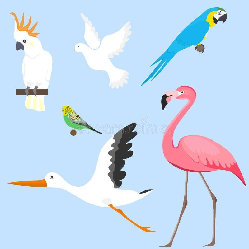 Pájaros, un sistema de pájaros diversos El flamenco, loro, cacatúa, cigüeña, se zambulló libre illustration