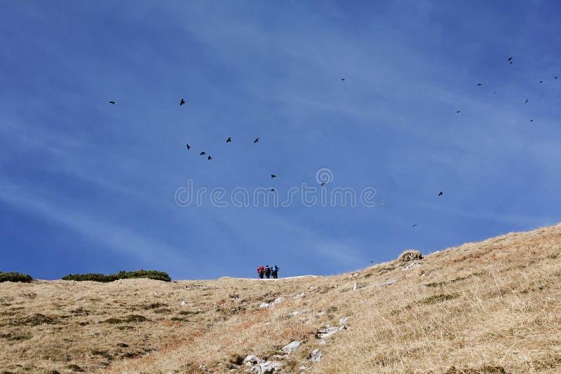 Pájaros y gente en las montañas imágenes de archivo libres de regalías