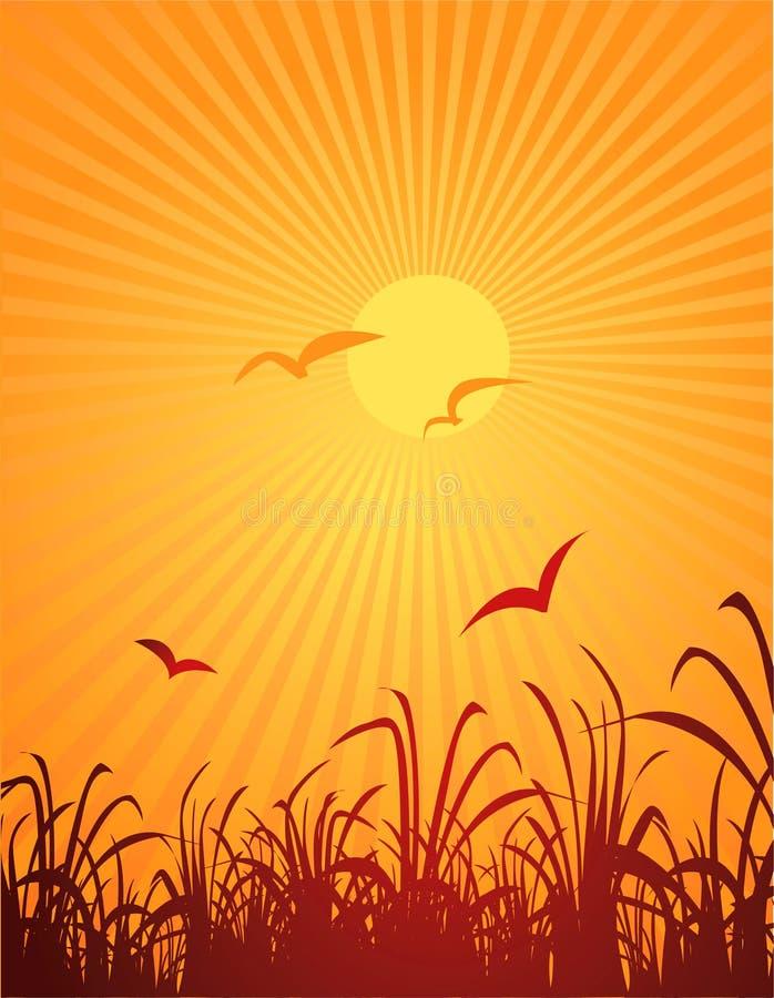 Pájaros y sol libre illustration
