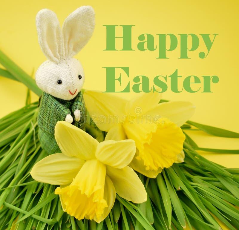 Páscoa feliz com ilustração do coelho e do narciso amarelo imagem de stock