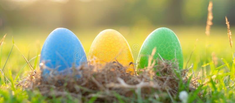 Páscoa feliz com o coelho bonito na manhã, decoração engraçada dos ovos coloridos na estação de mola da grama imagem de stock