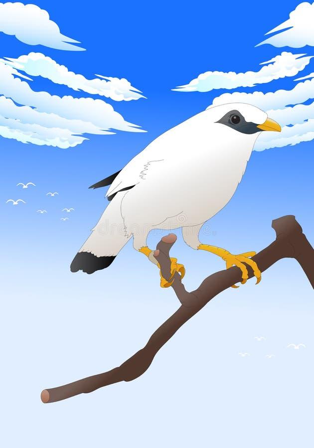 Pássaro branco ilustração stock