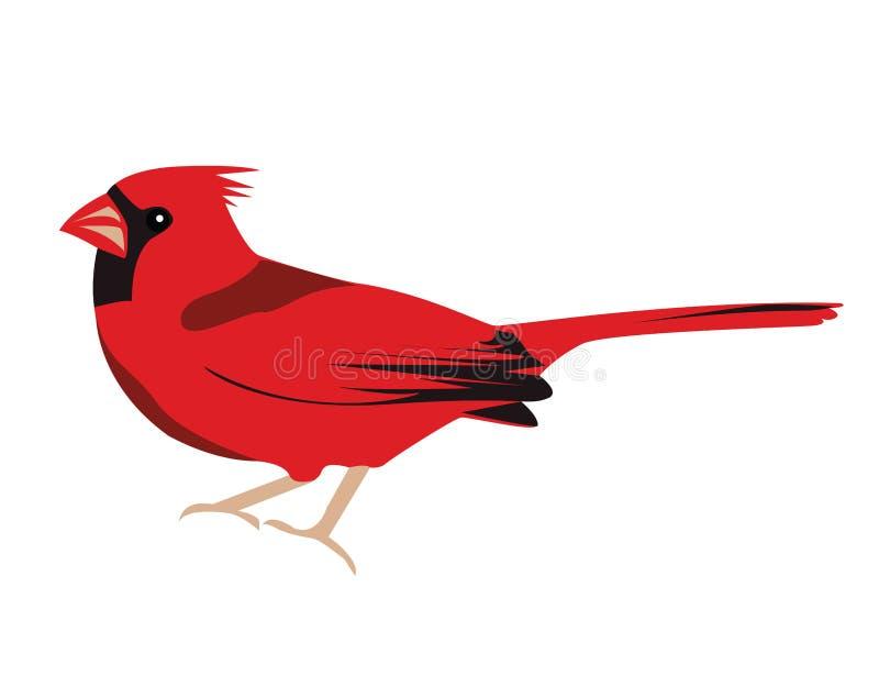 Pássaro cardinal ilustração stock