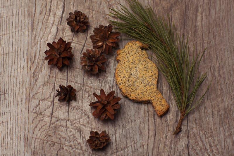 Pássaro da cookie com sementes de papoila imagem de stock royalty free
