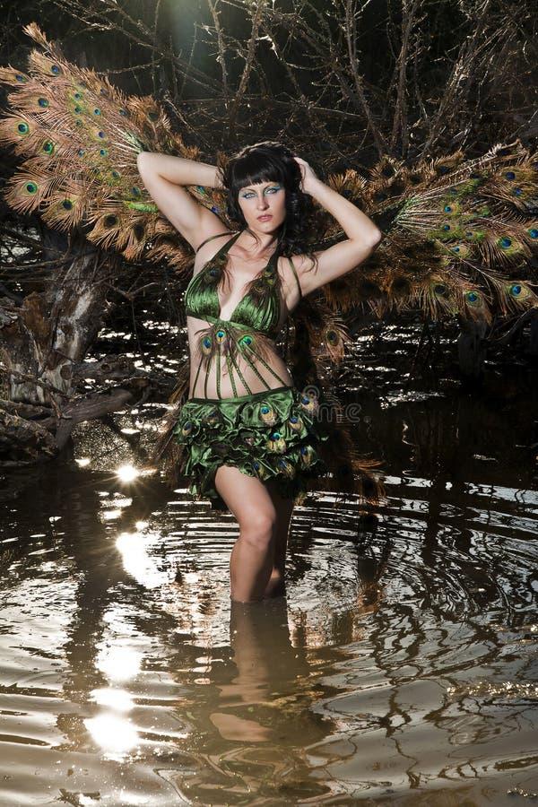 Pássaro da menina no pântano verde fotos de stock