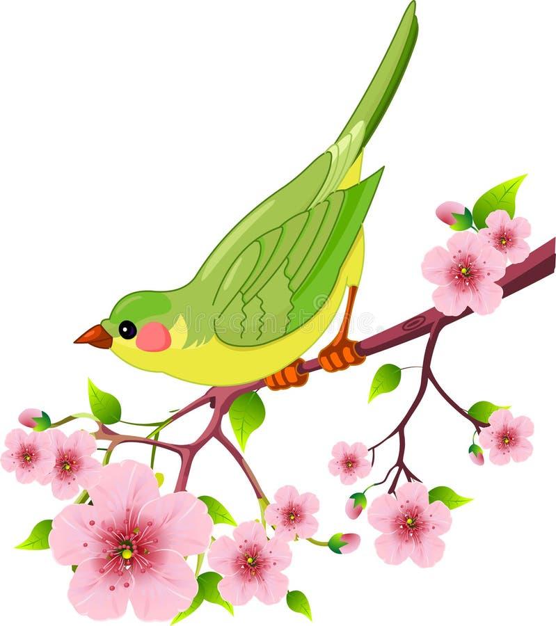Pássaro da mola ilustração do vetor