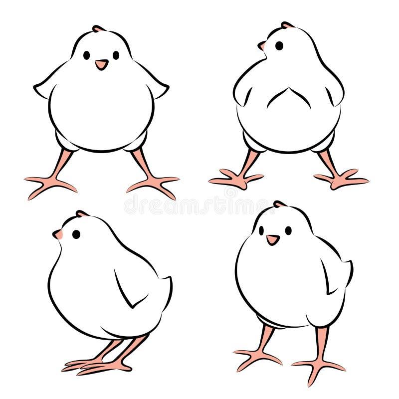 Pássaro de bebê de quatro ângulos ilustração do vetor