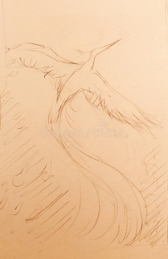 Pássaro de phoenix da insurreição que voa acima, tirando no fundo do Livro Branco ilustração do vetor