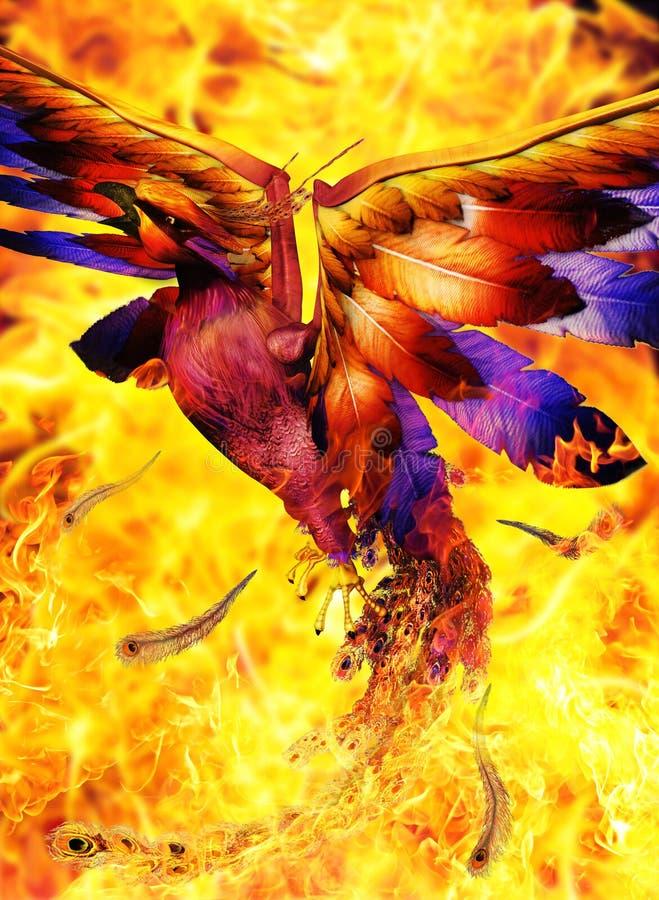 Pássaro de Phoenix que aumenta fora do fogo imagem de stock royalty free