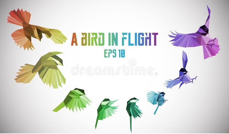 Pássaro do arco-íris no movimento Baixo-poli ilustração royalty free