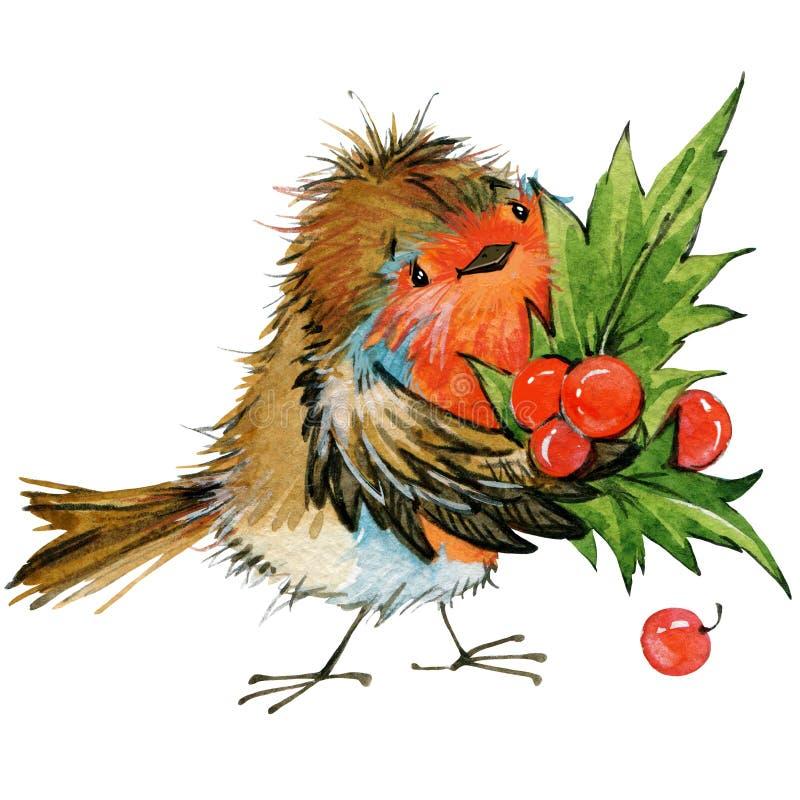 Pássaro do Natal e fundo do Natal Ilustração da aguarela ilustração stock