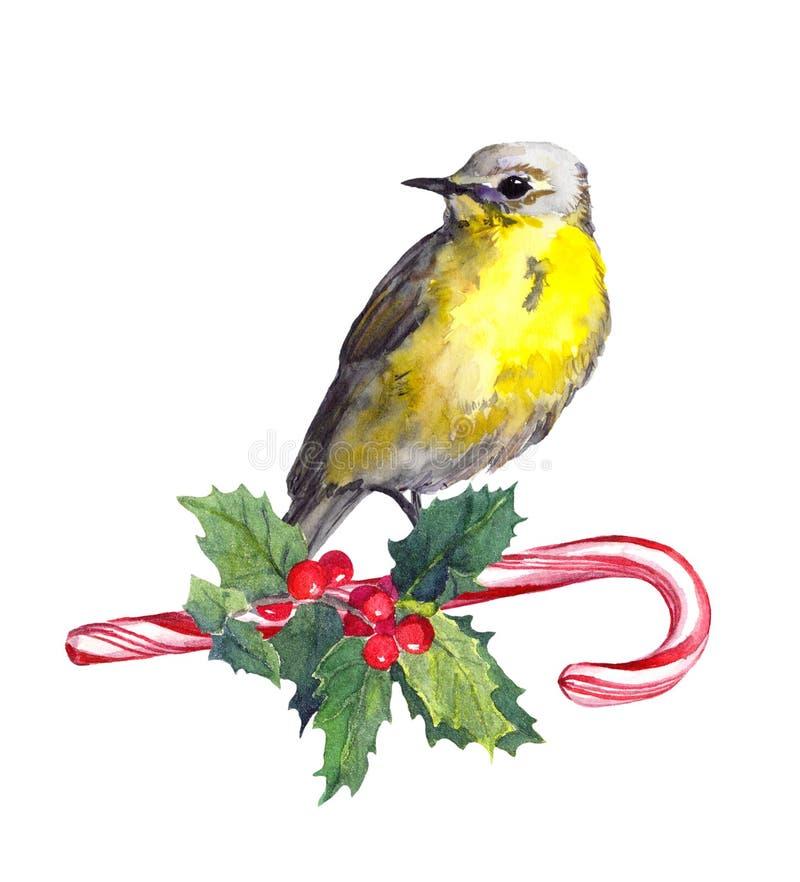 Pássaro do Natal no chapéu vermelho de Santa no bastão de doces watercolor ilustração stock