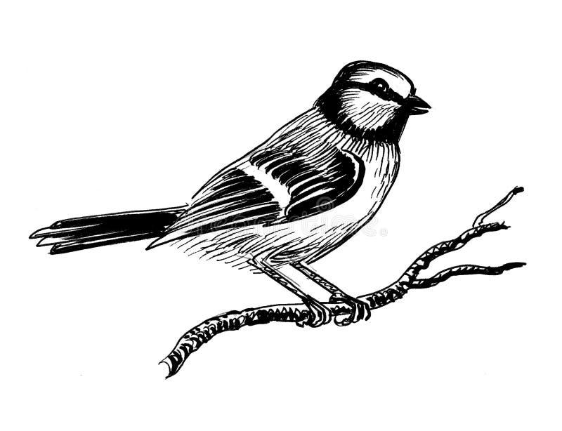 Pássaro do pardal ilustração do vetor