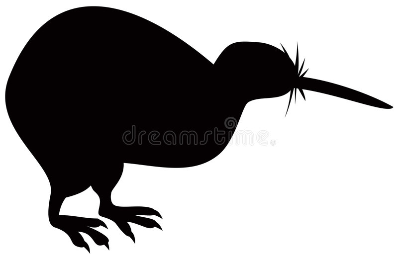 Pássaro do quivi ilustração do vetor