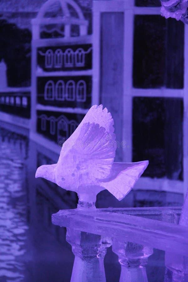Pássaro do rosa do gelo que senta-se em uma cerca do gelo fotos de stock