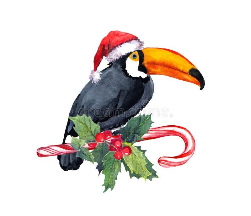 Pássaro do tucano no chapéu vermelho de Santa no bastão de doces e no visco do xmas Cartão incomum para o Natal tropical Cartão d ilustração stock