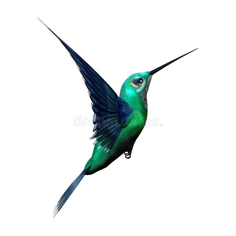 pássaro do zumbido da rendição 3D no branco ilustração do vetor