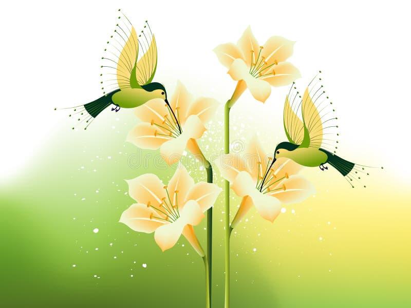 Pássaro e flores do zumbido ilustração do vetor