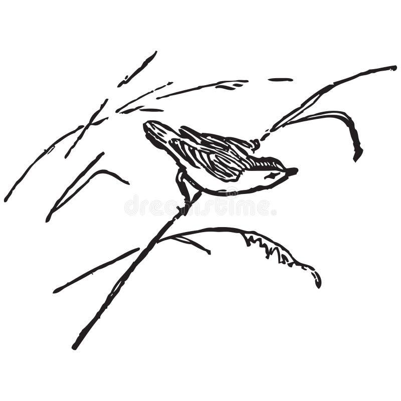 Pássaro em um bastão ilustração do vetor