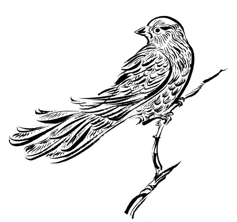 Pássaro em um ramo, cartaz do desenho da tinta ilustração do vetor