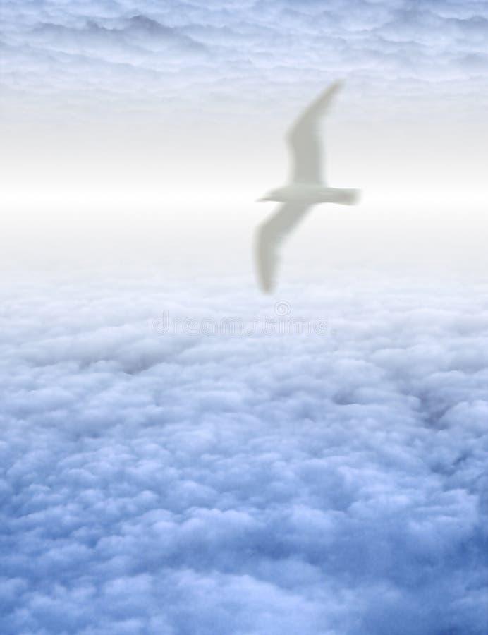 Pássaro no cloudscape sereno ilustração do vetor