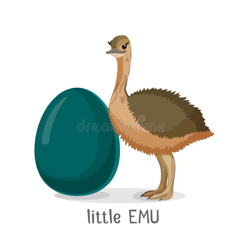 Pássaro pequeno do ema isolado no fundo branco, pintainho pequeno ilustração stock