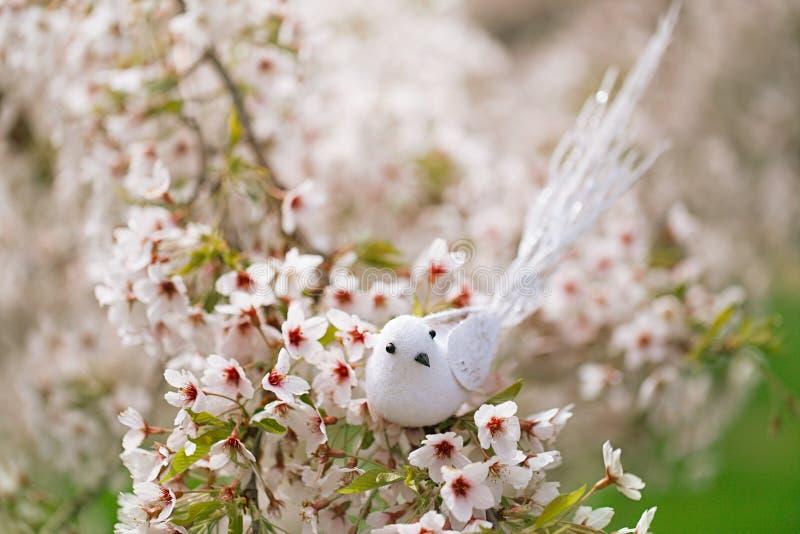 Pássaro pequeno na mola com cereja da flor fotografia de stock royalty free