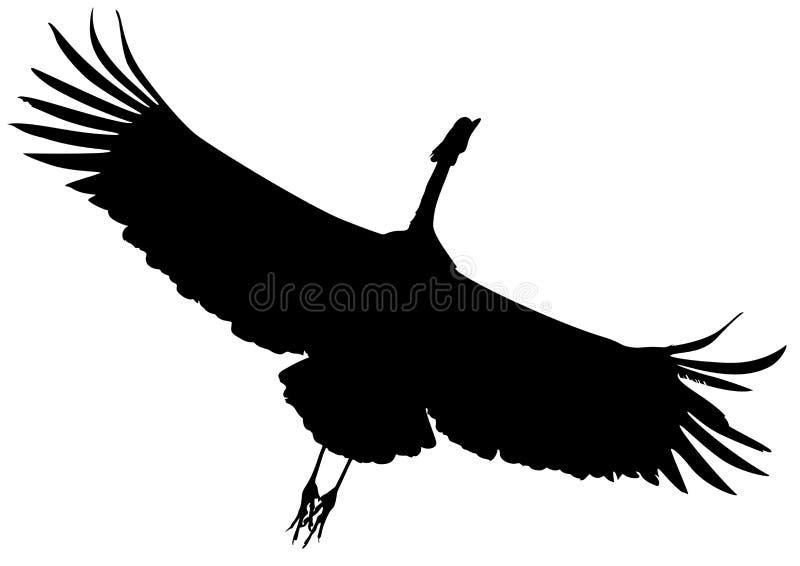 Pássaro preto do guindaste do voo da silhueta ilustração do vetor