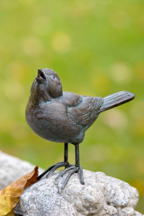 Pássaro que sining uma canção fotos de stock royalty free
