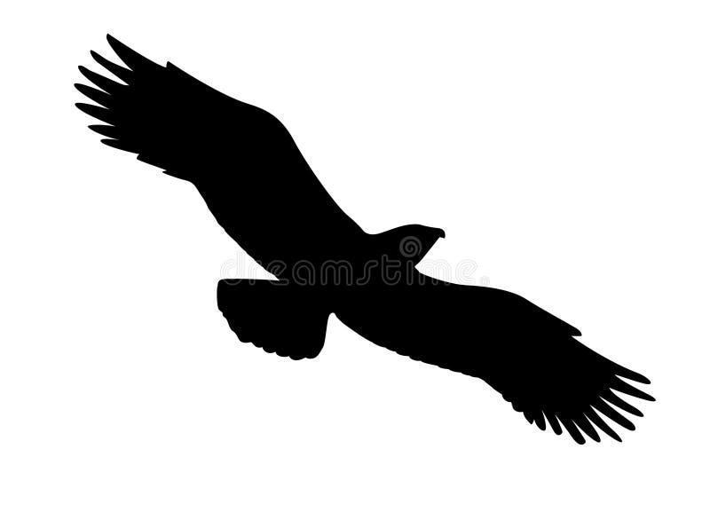 Pássaro Ravenous ilustração royalty free