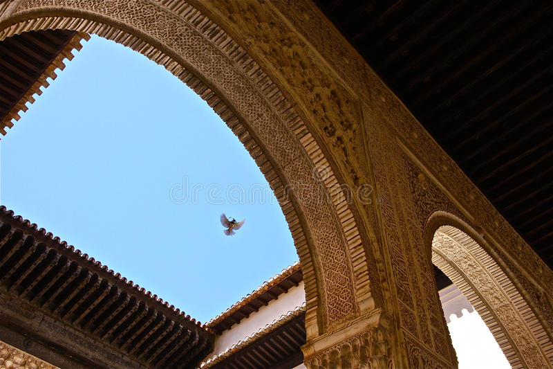 Pássaro sobre o La Alhambra imagens de stock royalty free