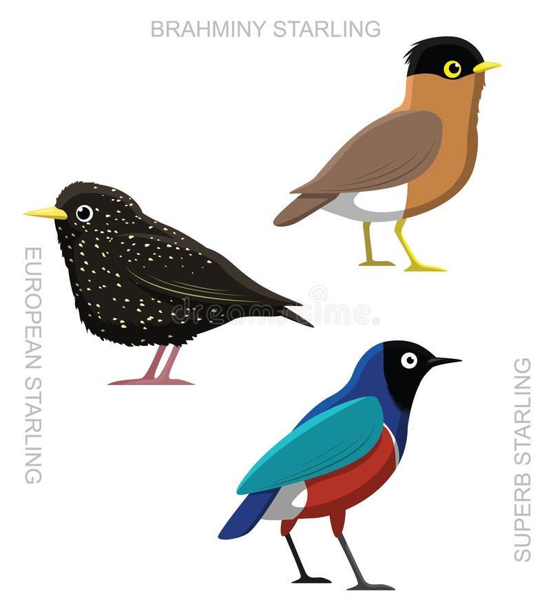 Pássaro Starling Set Cartoon Vetora Illustration ilustração do vetor