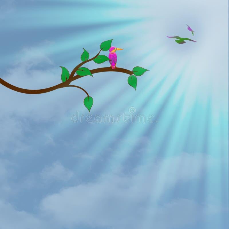 Pássaro tropical empoleirado no ramo de árvore com céus azuis e sol que fluem para baixo, fundo gráfico ilustração stock